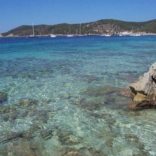 https://www.apartamentosbonsol-ibiza.com/wp-content/uploads/2016/10/Ibiza_playa_de_ses_salines2341-540x540.jpg