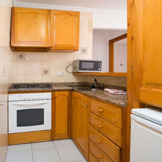 https://www.apartamentosbonsol-ibiza.com/wp-content/uploads/2016/10/miniatura-7-540x540.jpg