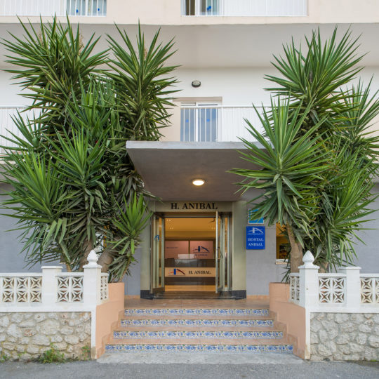 https://www.apartamentosbonsol-ibiza.com/wp-content/uploads/2020/02/FOTO-6-540x540.jpg